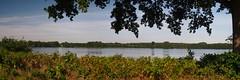 Lake View - September 21, 2020 - Schleswig-Holstein - Germany