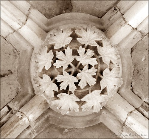 Templerkapelle in Mücheln bei Wettin, Joch des Deckengewölbes