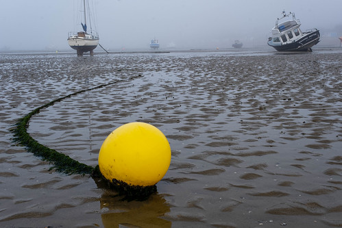Buoy in the mist.