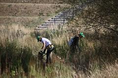 Clean up day au Parc du Peuple de l'Herbe de Carrières-sous-Poissy