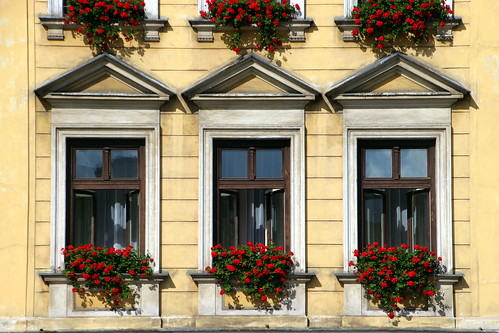 Pretty Window Baskets