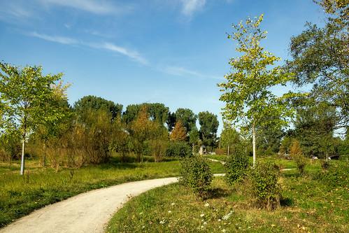 Landschaft mit Weg