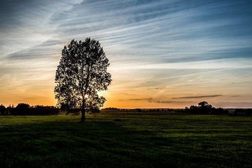 Rural Poland [explored 2020-09-24]