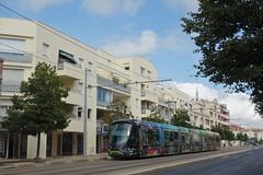 Alstom Citadis 402 n°2081  -  Montpellier, TaM