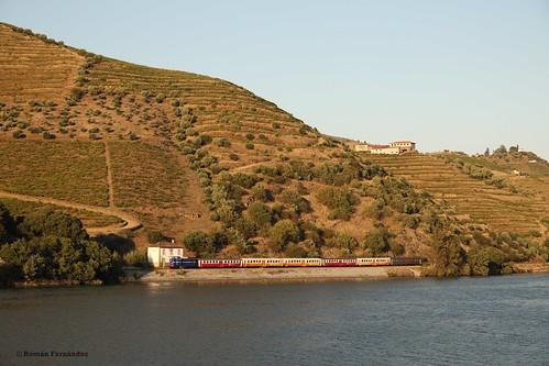 Douro (III)