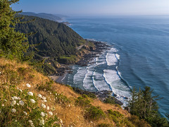 Oregon Art! Cape Perpetua Sunny Day Fuji GFX100 Fine Art Landscape Nature Photography! Washington State Art! Elliot McGucken 45EPIC Master Medium Format Photographer Fuji GFX 100 & Fujinon Fujifilm GF Lens!