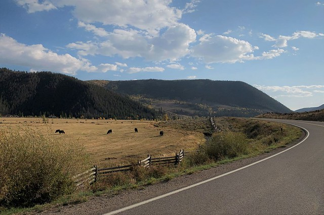 Photo:Bend in the Road By thart2009