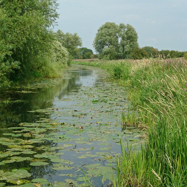 Photo:Pocklington Canal, East Yorkshire By naturalengland
