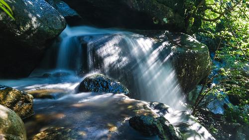 秋 分 溪 流
