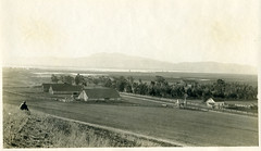 [CALIFORNIA-J-0059] A.M. Merrill Ranch - Collinsville