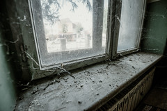 Dirt, dust and spider web on the windows of the old building.