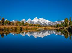 Schwabacher Landing Grand Teton National Park Fuji Autumn Colors Fall Foliage GFX100 Fine Art Landscape Nature Photography! Wyoming State Art! Elliot McGucken 45EPIC Master Medium Format Photographer Fuji GFX 100 & Fujinon Fujifilm GF Lens!