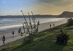 Channel beach 2020-9