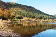Bassenthwaite Lake National Nature Reserve, Lake District, England