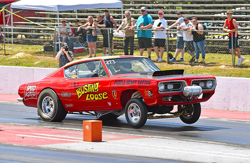 The Busting Loose Plymouth Barracuda B/Gasser digging in