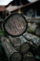 Closeup of cute pile of old wood.