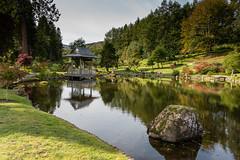 2020_Japanese_Garden