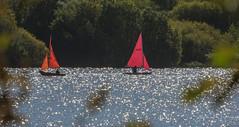 Wish Sailing Sunday