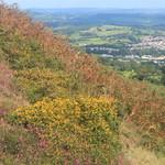 Capel Llwyd Mountainside