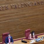COMISSIÓ ESPECIAL D'ESTUDI SOBRE LES MESURES DE PREVENCIÓ DELS RISCOS D'INUNDACIONS DEL BAIX SEGURA EN MATÈRIA TERRITORIAL, URBANÍSTICA I HÍDRICA