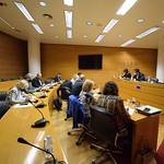 Comissió de Coordinació, Organització i Règim de les Institucions de la Generalitat