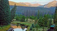 Rocky Mountain Cabin Sunrise, CO  8-12
