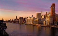 East River Twilight