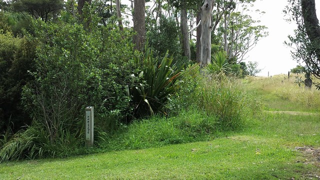 Photo:Anglican Division M, Row 6, Plot 33 By Discover Waikumete Cemetery