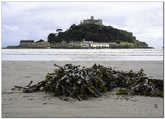 St' Michaels mount Cornwall and some artistic seaweed.😊