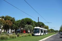 Alstom Citadis Compact n°111  -  Avignon, ORIZO