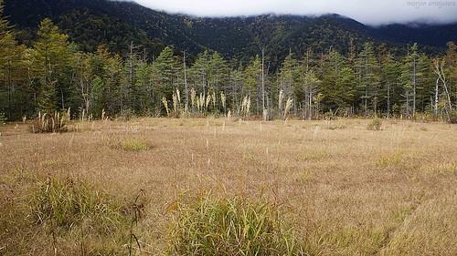 Tashiro-ike Pond, Kamikochi, Nagano, Japan