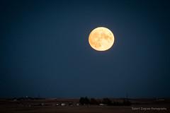 Sunset, Barn, and Moon