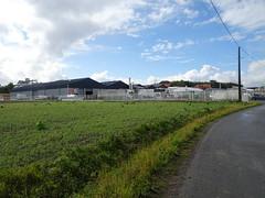 Mons-en-Pévèle lieu dit Matinval KWS MOMONT SAS