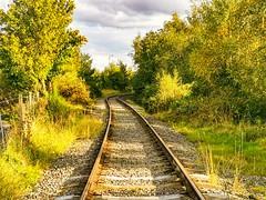 Steam Train Tracks, Chase Water, Burntwood, England