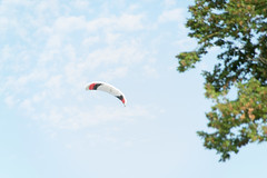 K3030027 - Photo of Saint-Martin-du-Lac