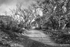 Argadells / Flinders Ranges 4x4 trip Aug 2020