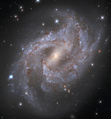 Hubble observes spectacular supernova timelapse