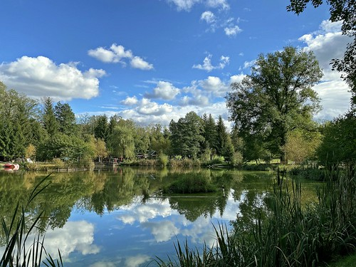 Teichlandschaft im Göltzschtal