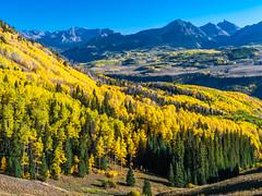 Telluride Peak Autumn Colors Fall Foliage Colorado Aspens Fuji GFX100 Fine Art Landscape Nature Photography! Elliot McGucken 45EPIC Master Medium Format Photographer Fuji GFX 100 & Fujinon Fujifilm GF Lens!