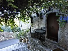 Viatge cultural Provença Costa Blava (8)