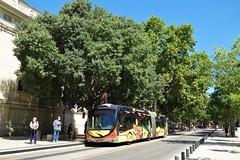 Irisbus Créalis Néo 18  -  Nîmes, TANGO
