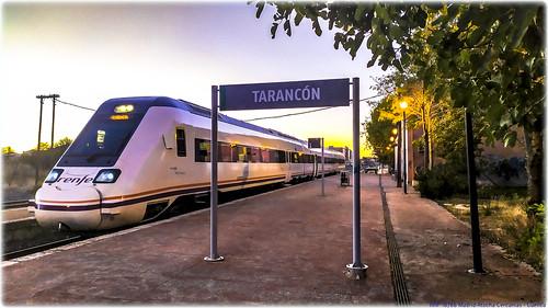 Lince en Tarancón