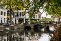 Early Autumn in The Hague