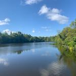 Primary photo for Walk around Lymm Dam (4th May 2019)