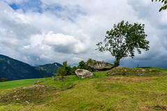 Peculiar druid rock with a picturesque tree in Swiss mountains