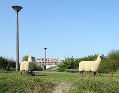 Dunkerque.- LAAC musée  Lieu d'Art et Action Contemporaine (7)