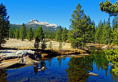High Country Reflections, Yosemite 2018