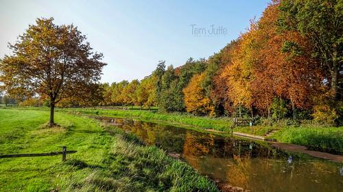 Herfst langs de Berkel, Almen, Netherlands - 1001