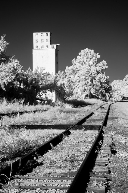 Photo:1.The Train Connecting Mississippi and Chicago By richard binhammer