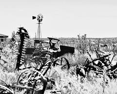 Wheels in the Weeds